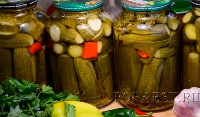 samyj-vkusnyj-recept-hrustjashhih-marinovannyh-ogurchikov