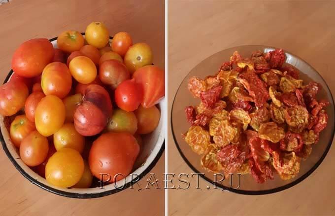 svezhie-i-vjalenye-pomidory