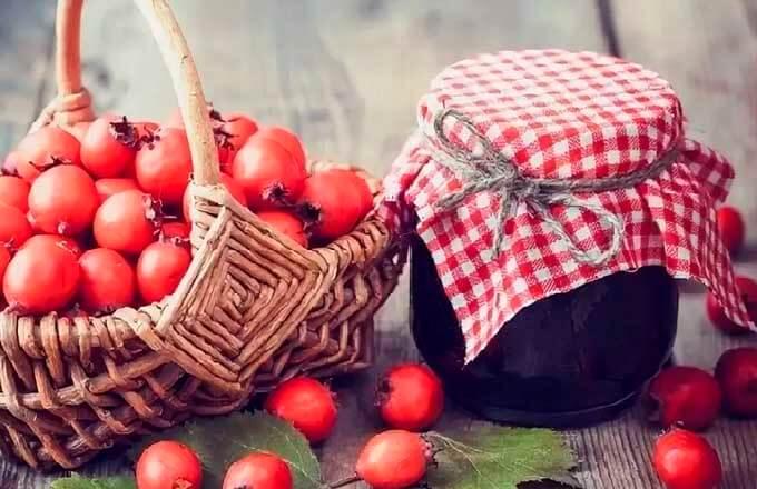 Плоды боярышника, как сохранить на зиму. Консервирование