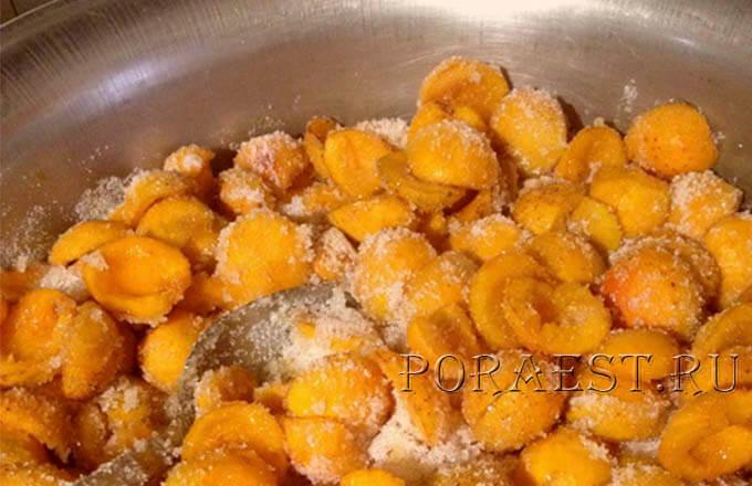 abrikosy-v-sahare