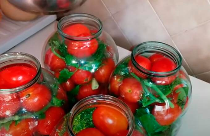 marinovannye-ogurcy-s-pomidorami