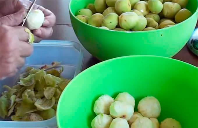 plody-smokovnicy-pochistit