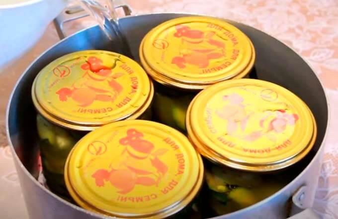 recept-ogurcov-s-kabachkami-na-zimu